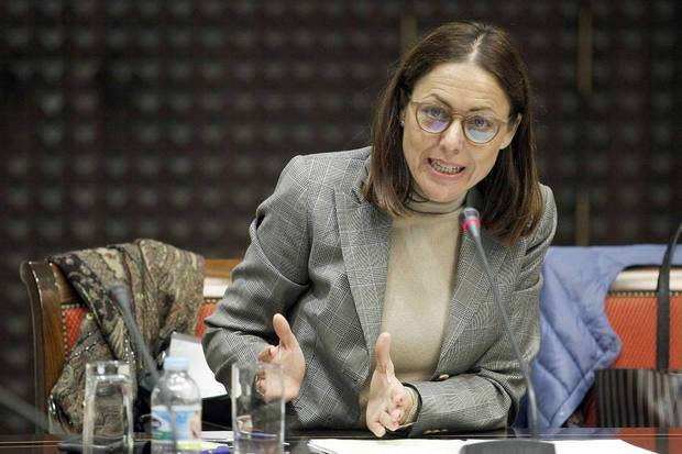 Vicepresidenta del Parlamento canario llamó a participar en el plebiscito