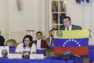 OEA cierra sus audiencias sobre Venezuela a la espera del informe final