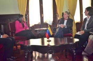 Delcy Rodríguez atiende reunión con experto de orden internacional