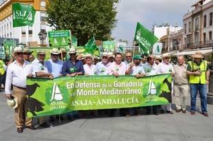 """Ganaderos convocados por Asaja-A piden que el CAP """"refleje la realidad"""" y advierten de la """"indefensión"""" del sector"""