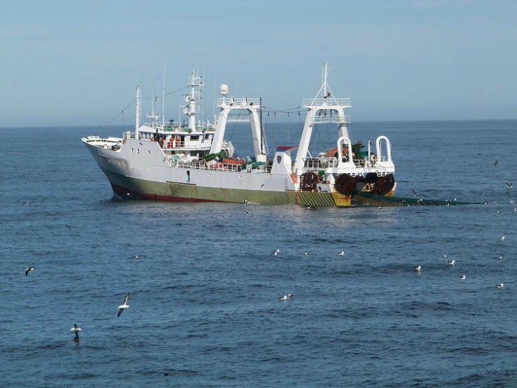 El gobierno capturó a un buque de bandera española     Normal  0      21