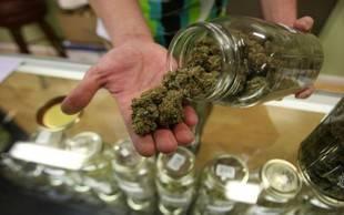 Congreso de Perú aprueba el uso medicinal de la marihuana