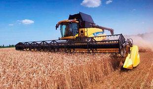 Marcos prev� una cosecha de cereal de 7,6 millones de toneladas, un 37% m�s, entre las mejores de la d�cada