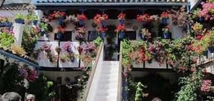 La Fiesta de los Patios de C�rdoba vuelve al tradicional libre acceso sin pases