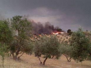 El Infoca calcula varios días para dar por controlado el incendio de Quesada
