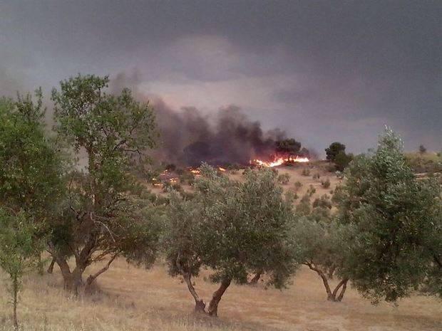 Dos medios aéreos y 84 especialistas siguen trabajando en el incendio de Quesada