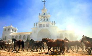 'Saca de Yeguas', la esencia de Doñana en estado puro