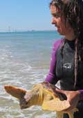Liberada una tortuga laúd atrapada en una red ilegal de pesca