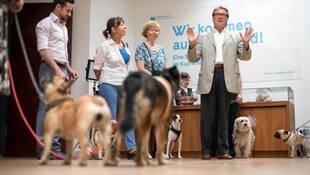 Museo berlinés abre sus puertas a visitantes con perros