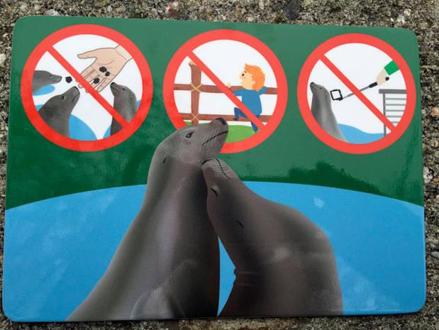 Zoo de Viena prohíbe el paloselfi en los recintos de focas y pingüinos